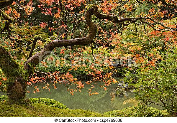 계절, 가을, 2, 정원 일본어 - csp4769636