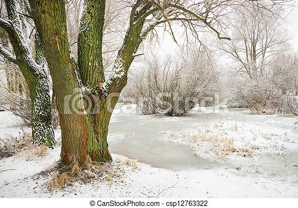 계절, 겨울 - csp12763322