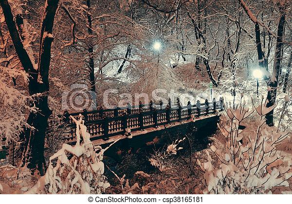 공원, 본부, 겨울 - csp38165181