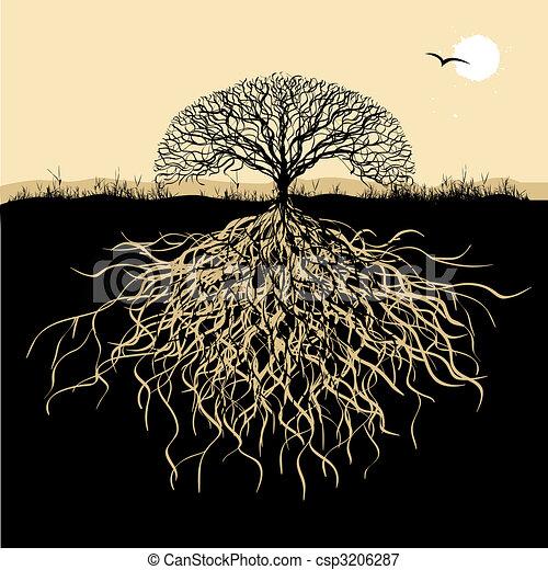 나무, 실루엣, 뿌리 - csp3206287