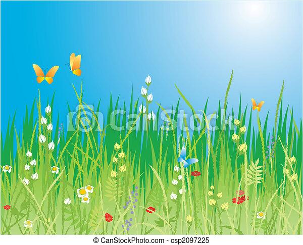 나비, 풀, -, 꽃, 벡터, 배경., &, 봄 - csp2097225