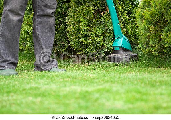 남자, 잔디 풀, 손질하는 사람, 깎는 것 - csp20624655
