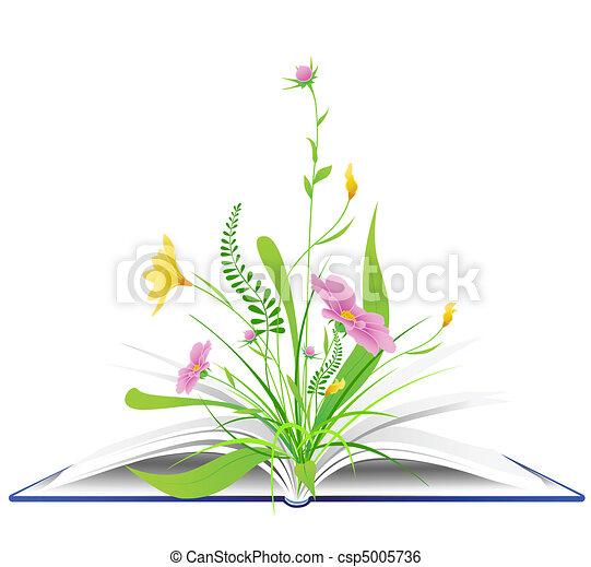 녹색, 꽃, 풀, 열린 책 - csp5005736