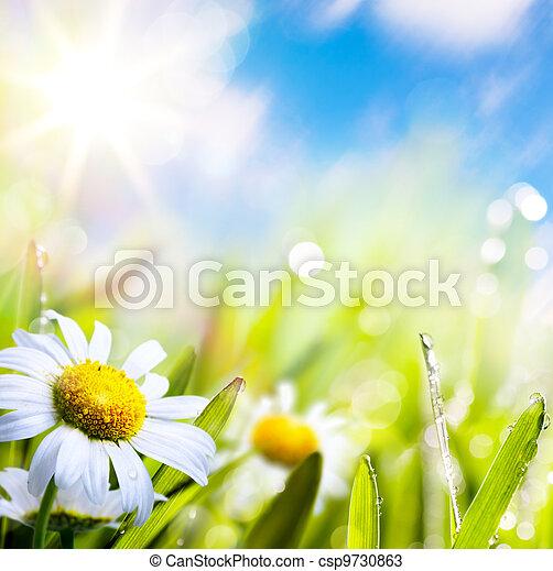 물, 떼어내다, 하늘, 배경, 예술, 여름, 잔디 태양, 꽃, 은 떨어진다 - csp9730863