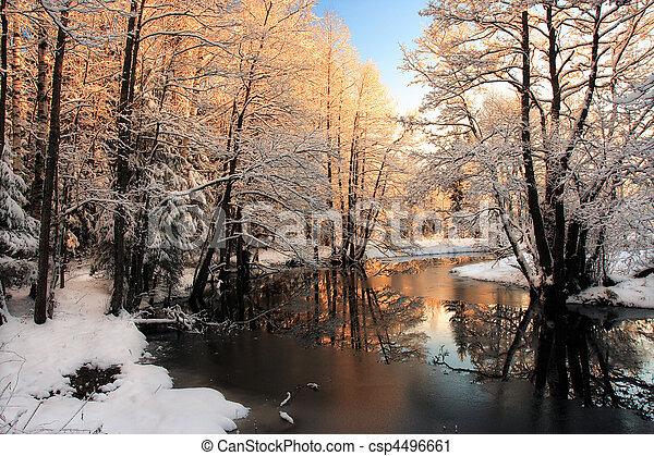 빛, 강, 겨울, 해돋이 - csp4496661