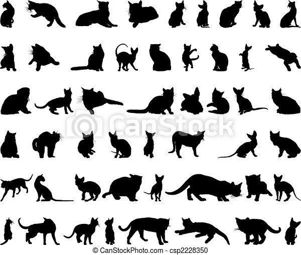 실루엣, 세트, 고양이 - csp2228350