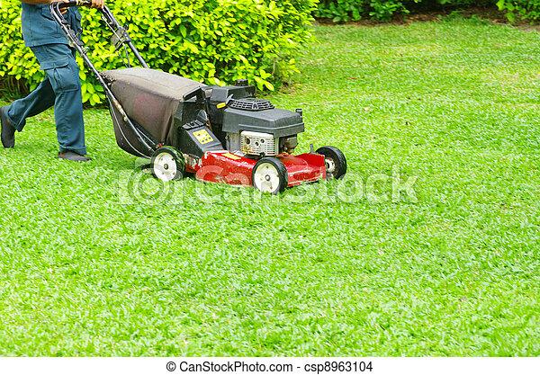 잔디를 깎는 것 - csp8963104