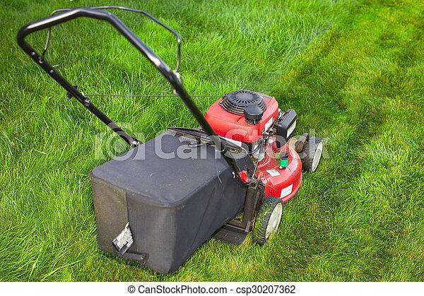 잔디, 절단, 녹색, grass., 잔디 깎는 사람 - csp30207362