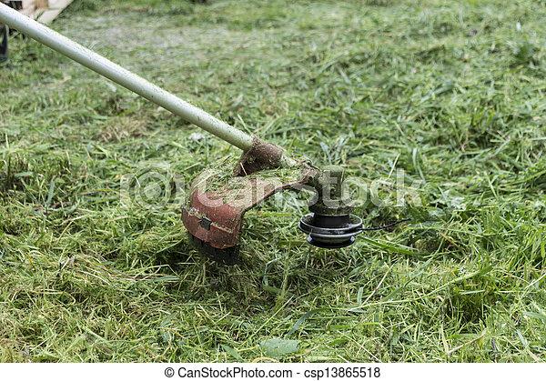 잔디 풀 베는 기계 - csp13865518