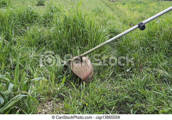 잔디 풀 베는 기계 - csp13865559