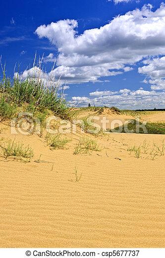 캐나다, 조경술을 써서 녹화하다, 사막, 매니토바 - csp5677737