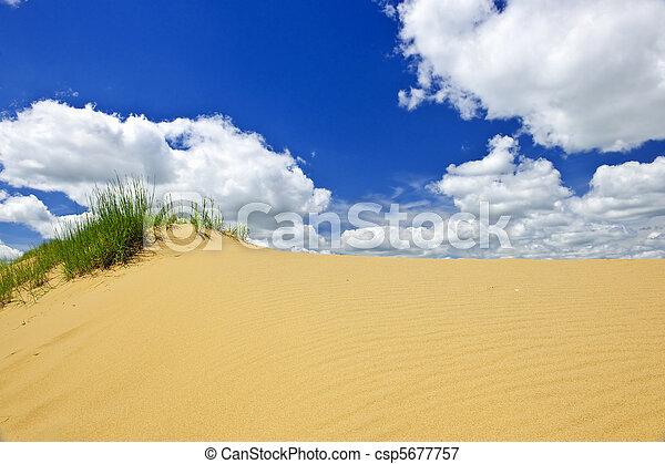 캐나다, 조경술을 써서 녹화하다, 사막, 매니토바 - csp5677757
