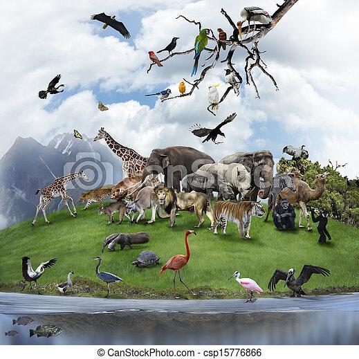 콜라주, 동물, 새, 야생의 - csp15776866