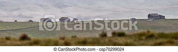 파노라마, 대초원, 보이는 상태 - csp70299024