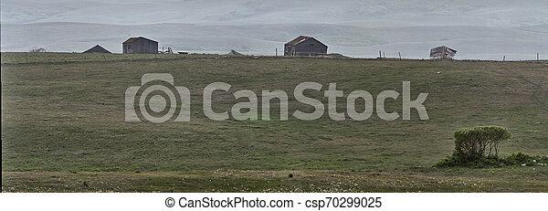 파노라마, 대초원, 보이는 상태 - csp70299025