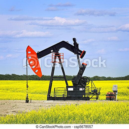 펌프, 기름, 끄덕이는 것, 대초원 - csp5678557