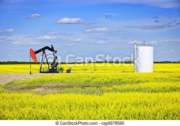 펌프, 기름, 끄덕이는 것, 대초원 - csp5678560
