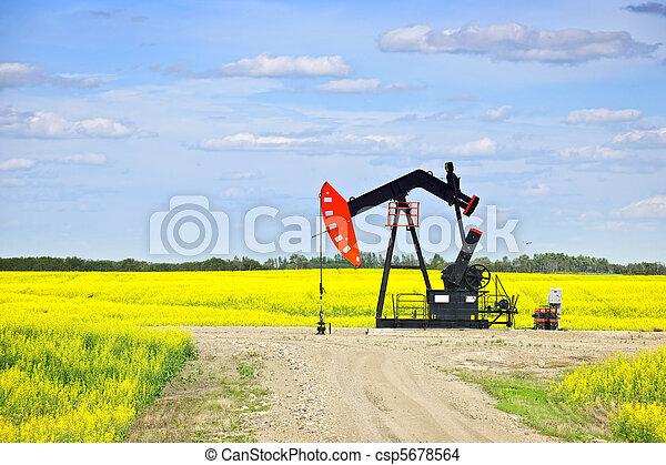 펌프, 기름, 끄덕이는 것, 대초원 - csp5678564