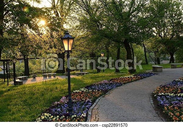 폴란드, 녹색, 공원 - csp22891570