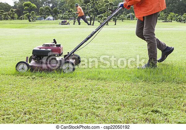 풀을 깎는 것, 잔디 깎는 사람, 들판, 잔디, 노동자 - csp22050192