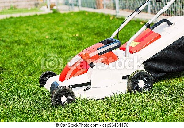 garden., 잔디 풀 베는 기계, 절단, 녹색 잔디 - csp36464176