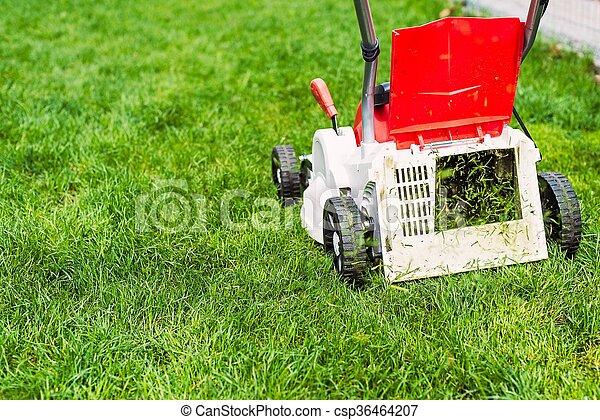 garden., 잔디 풀 베는 기계, 절단, 녹색 잔디 - csp36464207