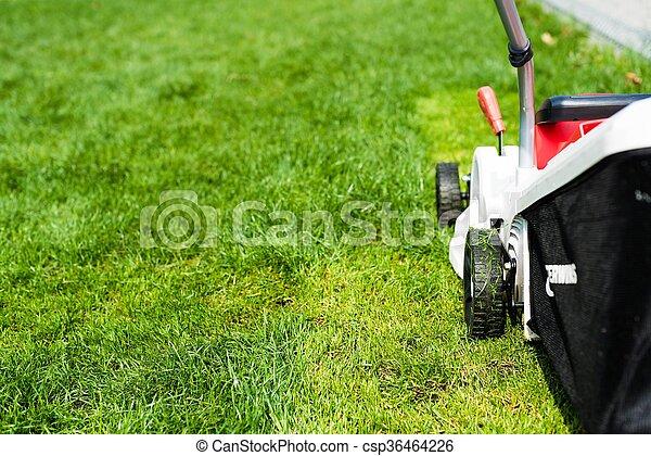 garden., 잔디 풀 베는 기계, 절단, 녹색 잔디 - csp36464226