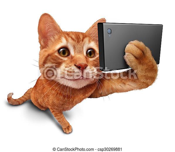 selfie, 고양이 - csp30269881